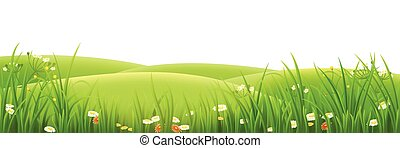 łąka, trawa, zielony, kwiaty