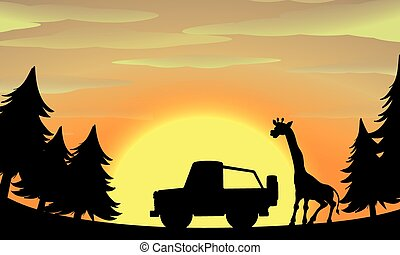 łazik, żyrafa, sylwetka, scena, natura