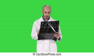 łopatka, pieszy, doktor, skandować, chroma, ekran, znowu, zielony, przegląd, rentgenowski, key.
