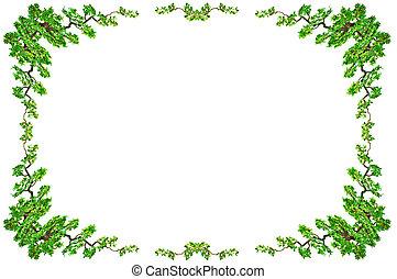 ścieżki, strzyżenie, liść, odizolowany, tło., zielony, included., biały, brzeg