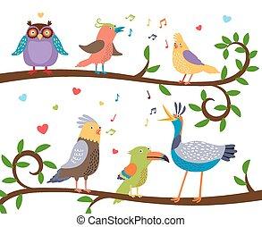 śpiew, gałęzie, ptaszki, drzewo