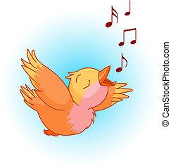 śpiew, ptak