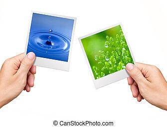 środowisko, roślina, natura, pojęcie, woda, fotografie, dzierżawa wręcza