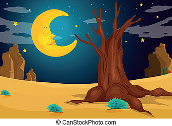 światło księżyca, wieczorny