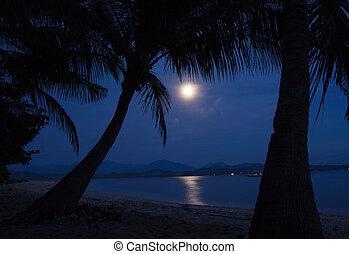 światło księżyca, woda