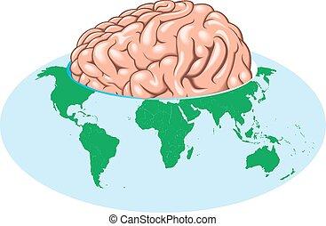 światowa kula, mózg, cielna