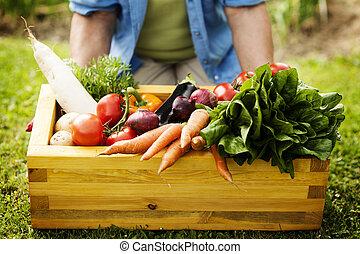 świeży, drewniany, wypełniony, warzywa, boks
