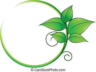 świeży, ułożyć, zielone listowie