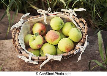 świeży, zielone jabłka, kosz