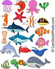 życie, komplet, rysunek, morze
