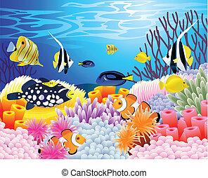 życie, morze, tło