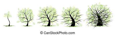 życie, stary, tree:, wiek, młodość, adulthood, dzieciństwo, gradacja, adolescencja