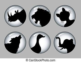 &, 1, sylwetka, czarnoskóry, zwierzę, biały