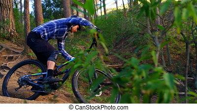 4k, jeżdżenie rower, człowiek, las