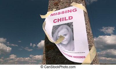 afisz, dziecko, fotografia, osoba, brakujący