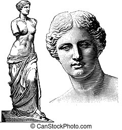 afrodyta, wektor, statua