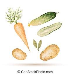 akwarela, komplet, vegetables.