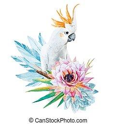 akwarela, kwiaty, papuga