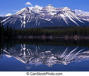 alberta, jezioro, canada., herbert