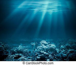 albo, głęboki, twój, podwodny, tło, morze, ocean, rafa, projektować, koral