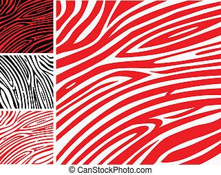 albo, skóra, próbka, druk, -, zebra, zbiór, czerwony, zwierzę, biały