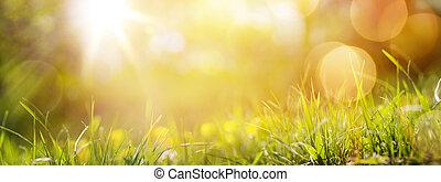 albo, wiosna, świeży, tło, trawa, lato, sztuka, abstrakcyjny