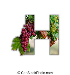 alfabet, robiony, owoc, świeży