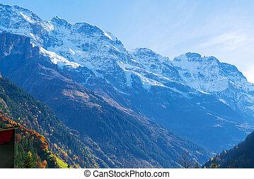 alpy, berner, góry, śnieżny, oberland, szczyty