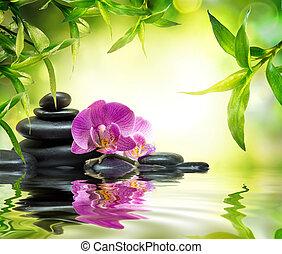 alternatywa, masaż, ogród
