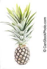 ananas, owoc, odizolowany