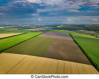antena, lato, przed, pola, zielony, prospekt, żniwa