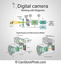aparat fotograficzny, dslr, cyfrowy