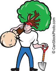 arborist, transport, drzewo, rysunek, ogrodnik