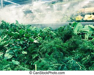 arugula, nowoczesny, rośliny, counter., inny, koper, sałatkowa zieleń, kłamstwa, roślina, pokarmy, pietruszka, przyjacielski, środowiskowo, chłodnia, supermarket, świeży, tło, zaopatrywać, cebule, ziele