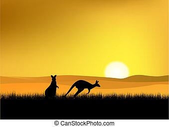 australia, zachód słońca