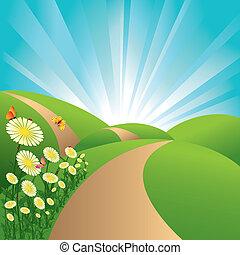 błękitne kwiecie, niebo, motyle, pola, krajobraz, zielony, wiosna