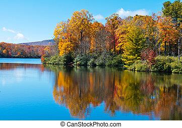 błękitny grzbiet, cena, odbijał się, powierzchnia, jezioro, liście, upadek, aleja