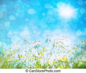błękitny, lato, kwiaty, niebo, przeciw