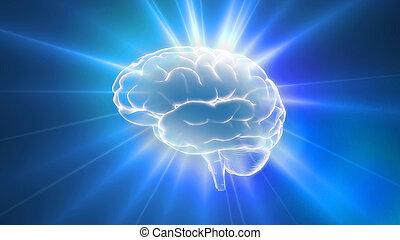 błękitny, mózg, klosze, szkic