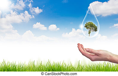 błękitny, pojęcie, eco, słońce, kropla, drzewo, przeciw, woda, :, niebo