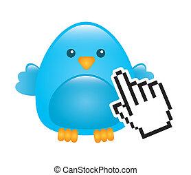 błękitny ptaszek