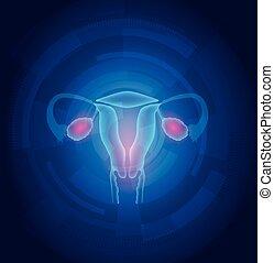 błękitny, samica, abstrakcyjny, tło, macica, technologia