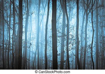 błękitny, spooky, drzewa, ciemny, mgła, forrest