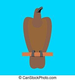 błękitny, złoty, sokół, orzeł, isolated., cielna, tło., silny, ptak