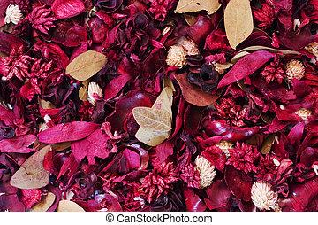 background:, kwiaty, zasuszony