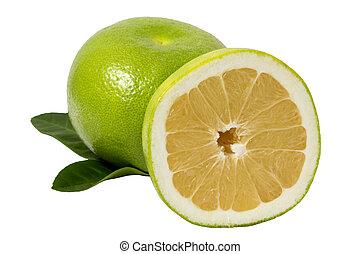 biały, grapefruits, odizolowany