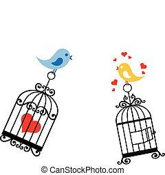 birdcage, miłość ptaszki