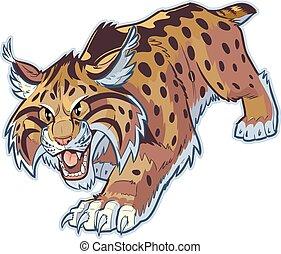 bobcat, wildcat, wektor, albo, maskotka