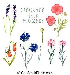 boks, boks, komplet, kwiatowy, creator., pociągnięty, ręka, akwarela, bukiety, drewno, różny, rośliny, kombinacje, projektować, jagody, kwiaty