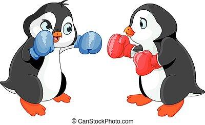 boks, pingwin